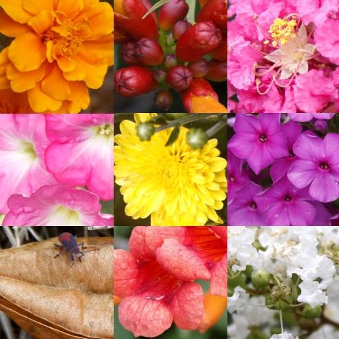 garden.quilt