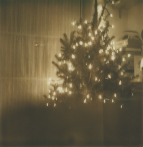 Our little tree