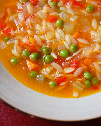 Vegetable Soup with Orzo© by Haalo