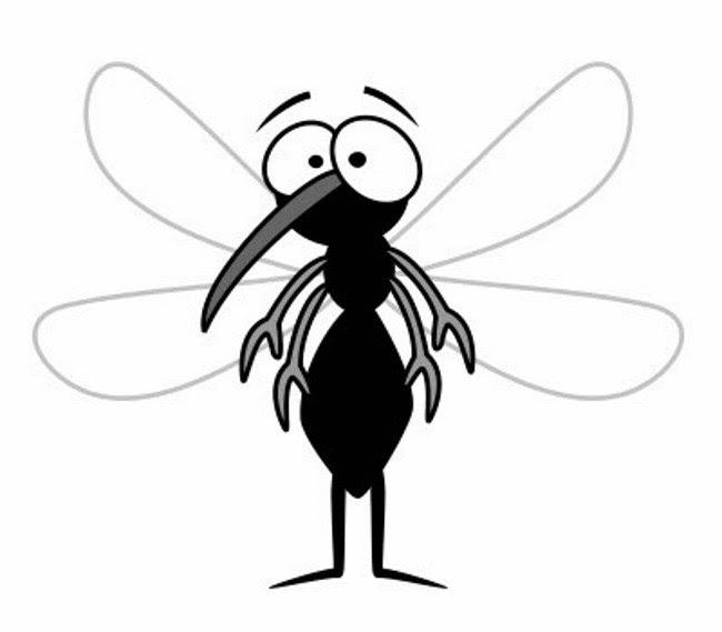 Povestea ţânţarului