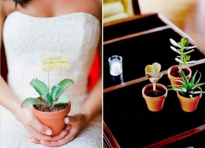 Plantas naturales para boda. Foto de Jen Lynne.
