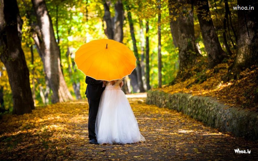 Young Married Couple Kissing In Yellow Umbrella Hd Couple Wallpaper