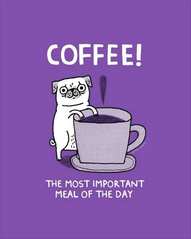 Funny Coffee Quotes And Sayings. QuotesGram