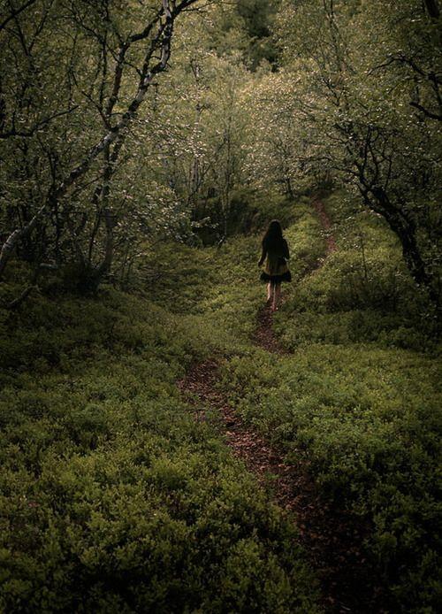 "Mediababe, #mediababe, www.mediababe.se, Jacqueline Kothbauer, www.jacquelinekothbauer.se, ""The Hidden Path"" by Tenteri"