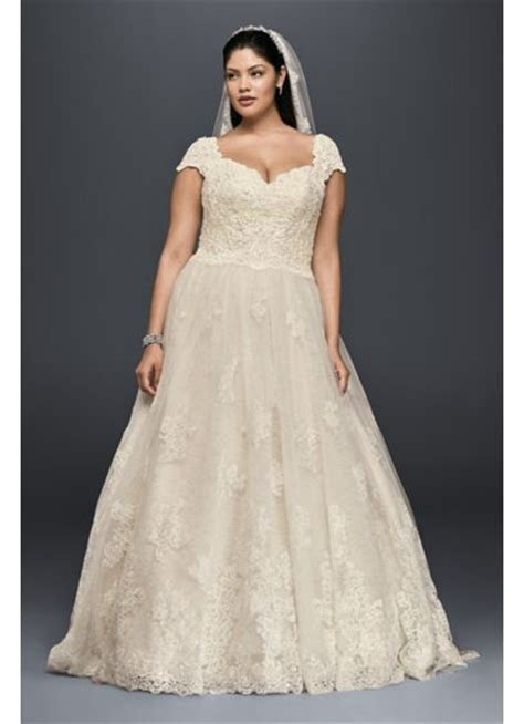 Cap Sleeve Lace Plus Size Ball Gown Wedding Dress   David