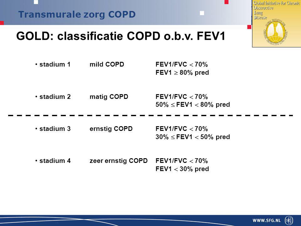 ZORGSTANDAARD COPD Hans in 't Veen ppt download