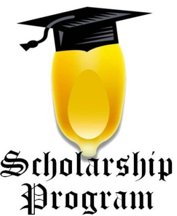 International Scholarships for Physiotherapists ...