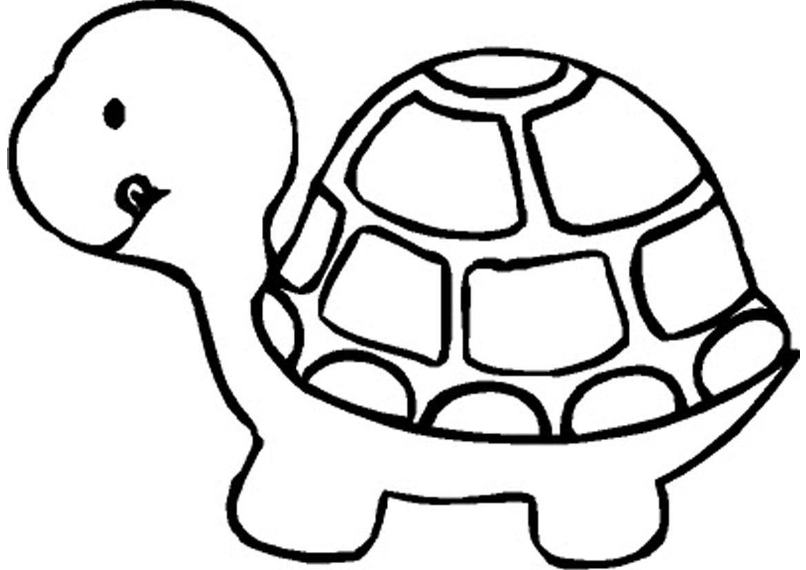 Coloriage bebe tortue