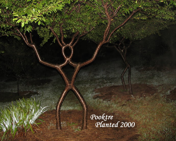 trees, pooktre 2