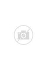 Photos of Pantry Designs