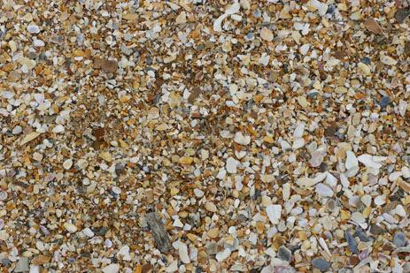 beach sand texture. Florida#39;s each sand – #39;sugar