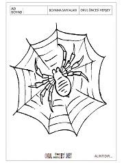 örümcek Boyama Sayfaları