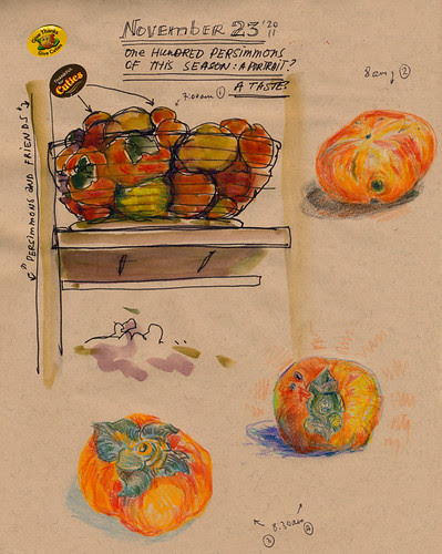 November 2011: 100 Views of Persimmons  by apple-pine