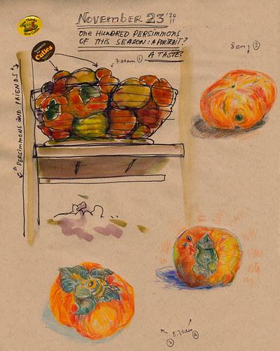 November 2011: 100 Views of Persimmons  by apple-pine