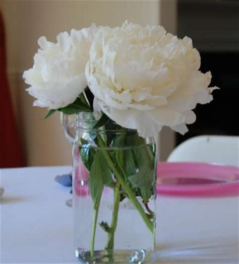 Best 20  Peonies Wedding Centerpieces ideas on Pinterest