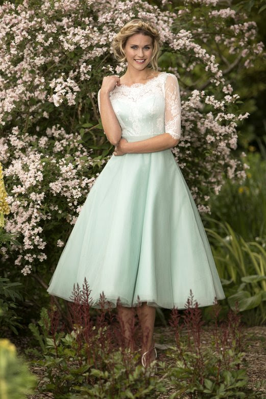 Half Sleeved Lace Bodice A-line Mint Green Tulle Bridesmaid Dress _1