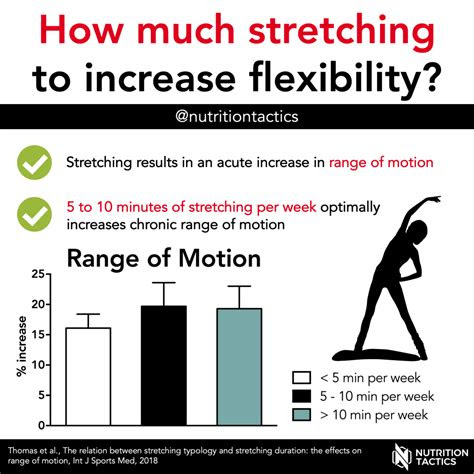 stretching  increase flexibility
