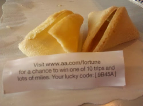 American Airlines Stupid Fortune Cookie