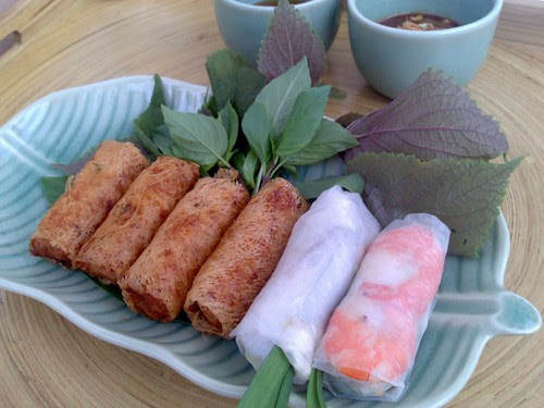 Fried and fresh spring rolls