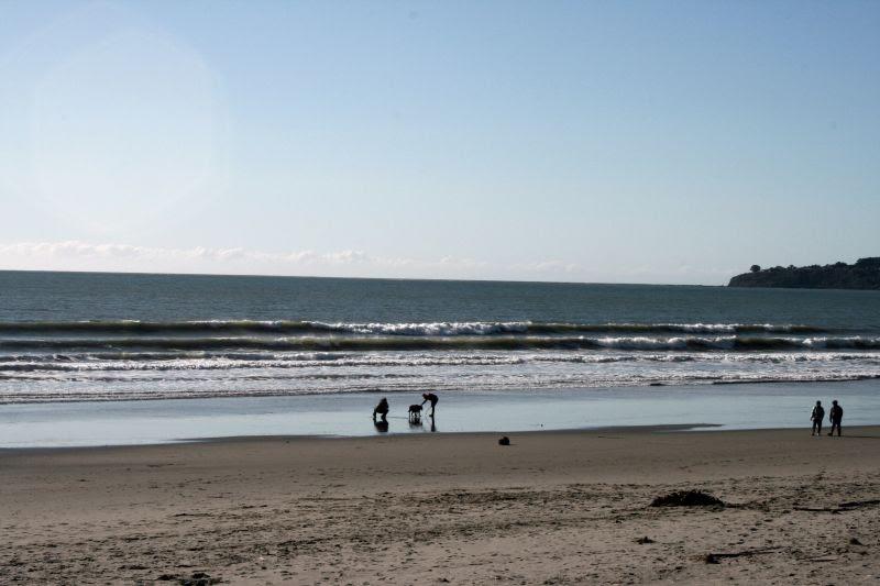 Stinson Beach dog walk