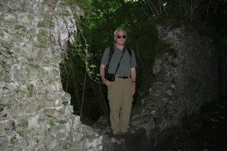 An old wall in the woods