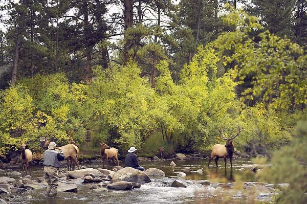 Shortarmguy 39 S Crazy Emails Fly Fishing In Estes Park