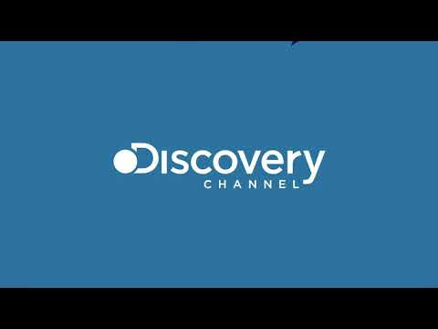 Assistir Discovery Channel Online
