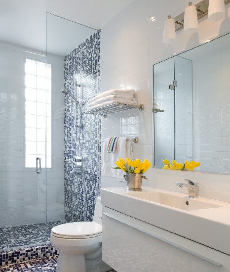 Bathroom Design Inspiring Blue And White Bathroom Accessories