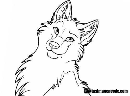 Imágenes De Dibujos De Lobos Imágenes