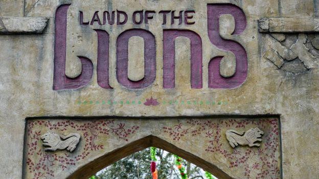 Land of Lions enclosure
