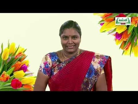 7th Tamil மதிப்பீடு அலகு 1 Kalvi TV