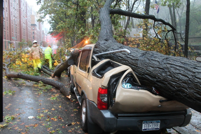 Tree Smash Car Harlem Hurricane Sandy
