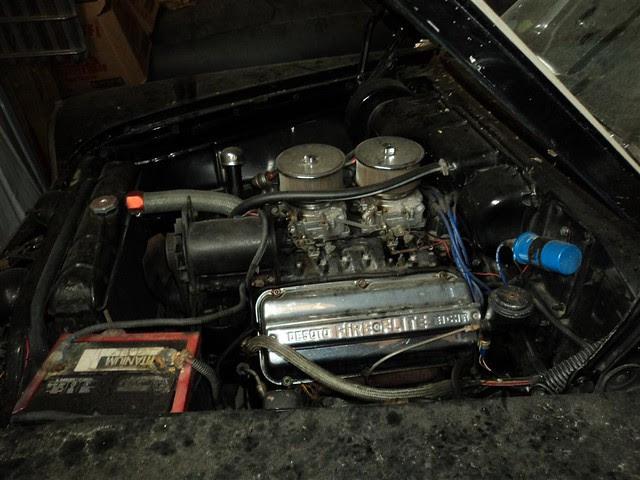 DSC00702 (Medium)