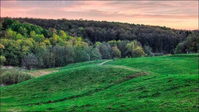 Окраина Царицынского парка/3673959_1 (700x393, 61Kb)