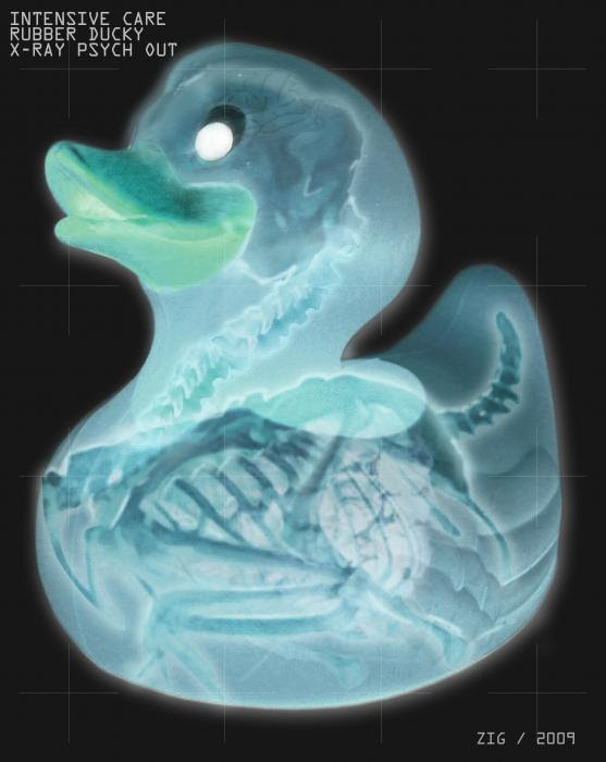 Rubber Ducky X-Ray Painting