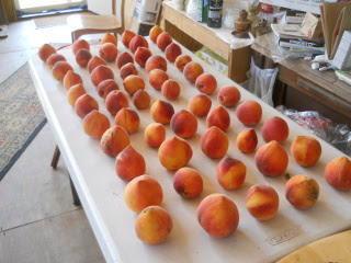 Nectarines Ripening on Table
