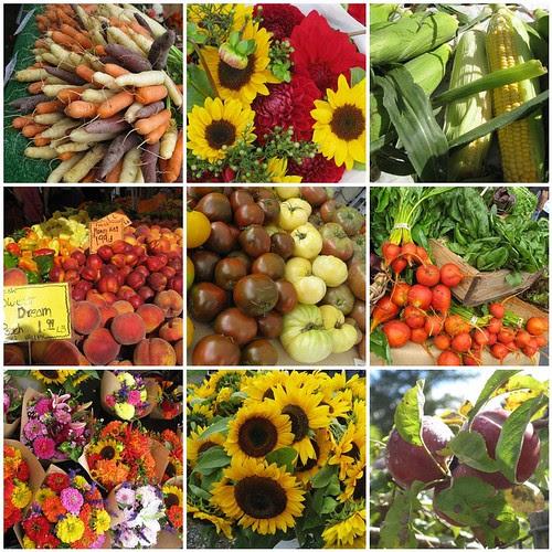 Issaquah Farmers Market