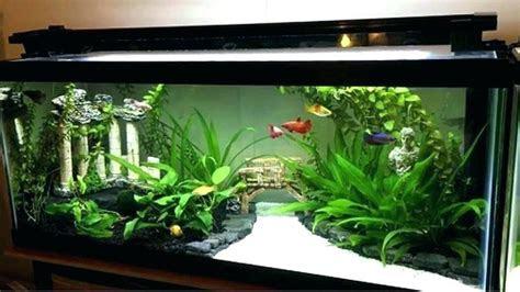 aquarium stand gal gallon long  purchase  kit metal