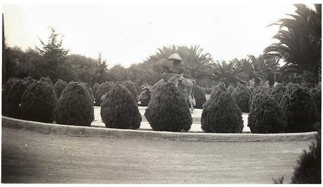Unknown oriental gardens 8