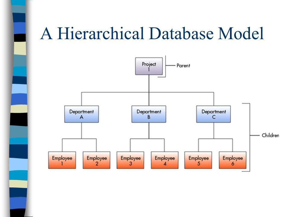 A+Hierarchical+Database+Model