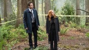 The X-Files Season 11 : Kitten