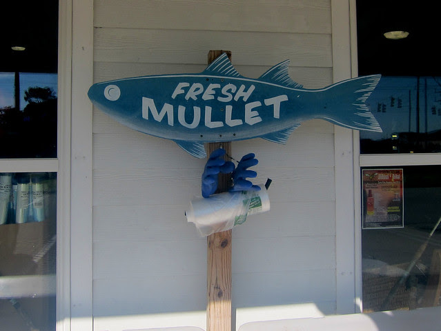 fresh mullet