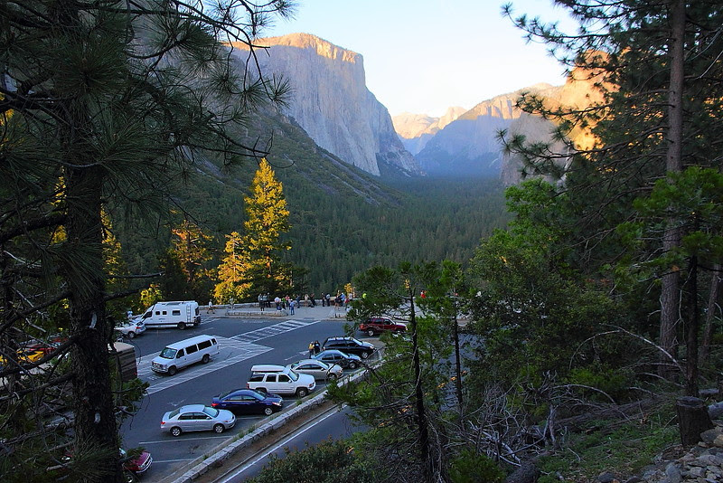IMG_3188 Pohono Trail