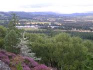 Phoineas Hill