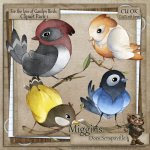 CU Hand Drawn For the love of Garden Birds Clipart