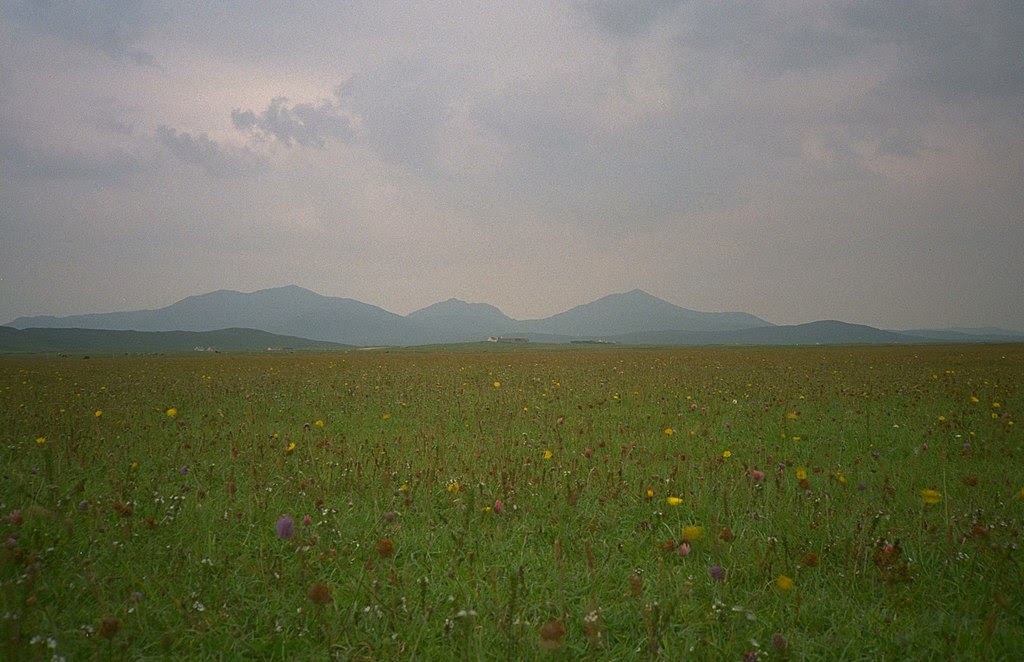 http://upload.wikimedia.org/wikipedia/commons/thumb/a/a7/South_Uist_machair_%28timniblett%29.jpg/1024px-South_Uist_machair_%28timniblett%29.jpg