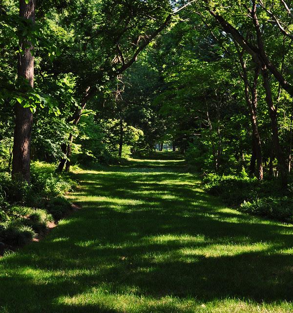 Eyre Hall (Woodland Walk to Cherrystone Creek)