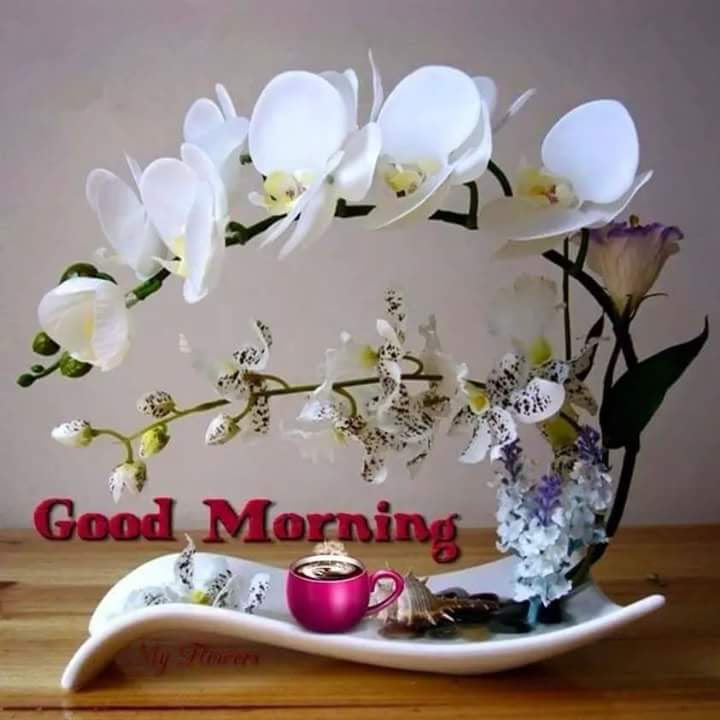 Good Morning Sunday Special Images The Emoji