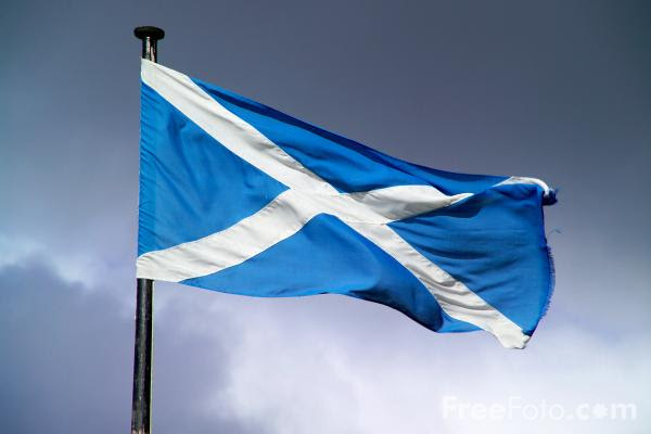 Picture of The Scottish Flag - Free Pictures - FreeFoto.com