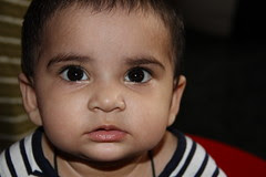 the one year old street photographer canon 60 d user nerjis asif shakir by firoze shakir photographerno1